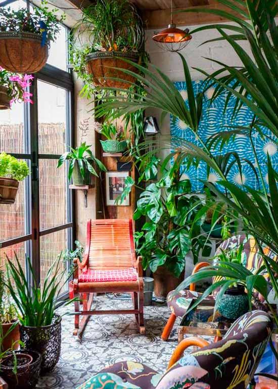 Зимний сад в доме, обустройство зимнего сада в квартире, домашний сад