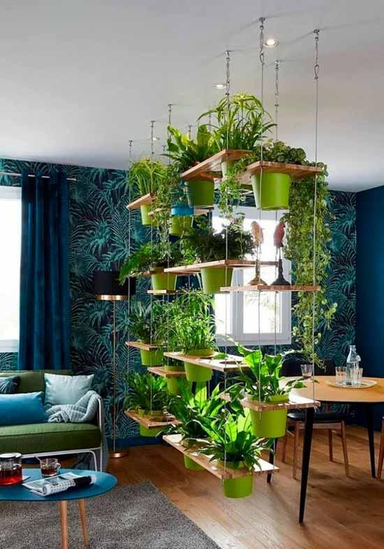Зимний сад в квартире, организация зимнего сада