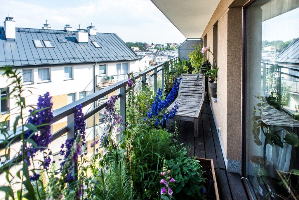 Зимний сад, зимний сад в квартире фото, современный дизайн зимнего сада